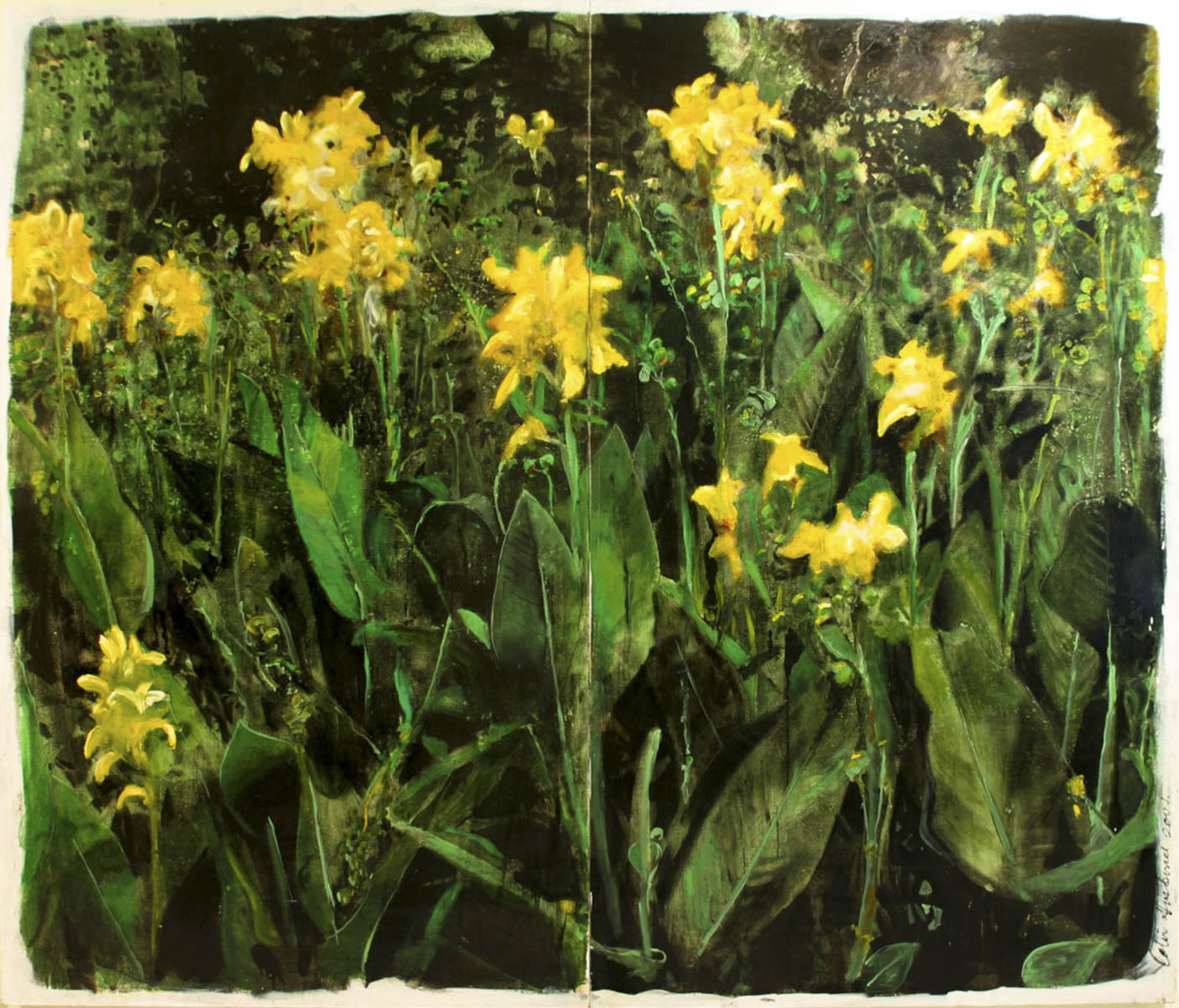 Yellow_Cana_lillies