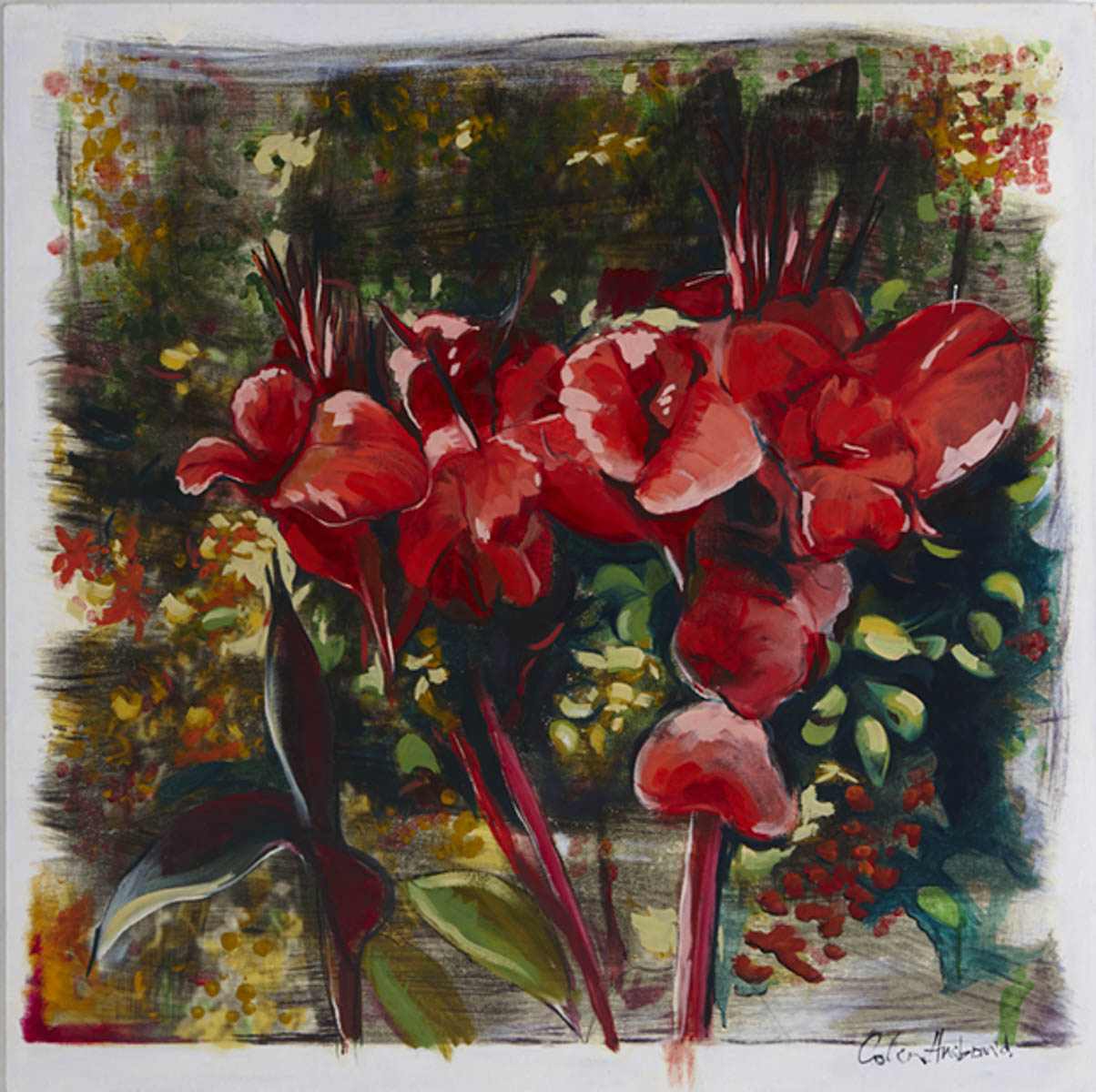 red canna lillies 2